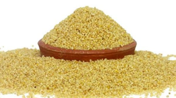 foxtail millet for wight loss, foxtail millets benefits, foxtail millets